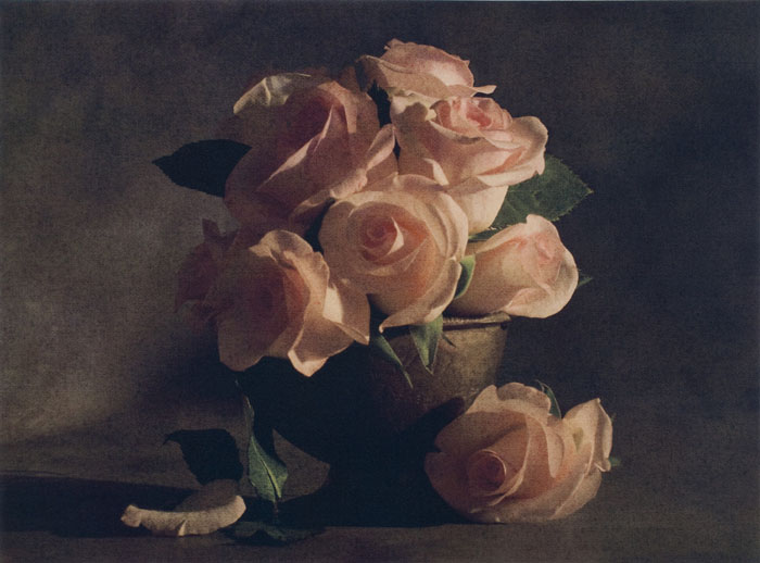Romantic Roses, by Cy DeCosse.