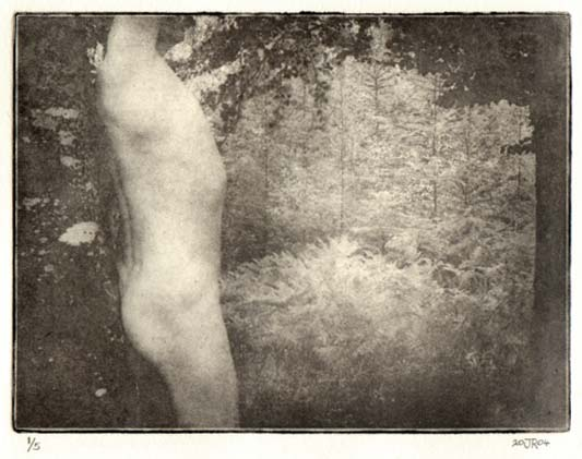 Photopolymer Gravure  Print by Jim Read