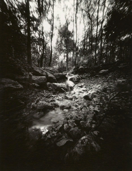 Pinhole Image - Stream on Barton Creek